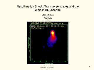 Recollimation Shock, Transverse Waves and the  Whip in BL Lacertae