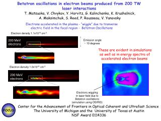 Betatron oscillations in electron beams produced from 200 TW laser interactions