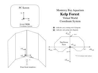 Default  VRML Coordinate System