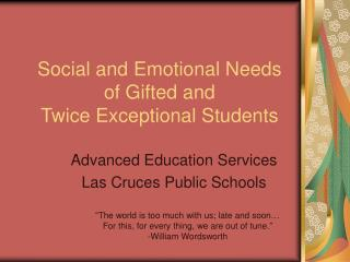 Social and Emotional Needs of Gifted and Twice Exceptional Students