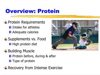 Overview: Protein