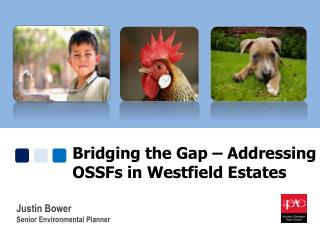Bridging the Gap – Addressing OSSFs in Westfield  Estates