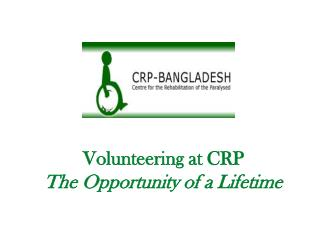 Volunteering at CRP The Opportunity of a Lifetime