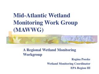 Mid-Atlantic Wetland Monitoring Work Group (MAWWG)