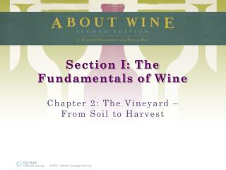 Section I: The Fundamentals of Wine