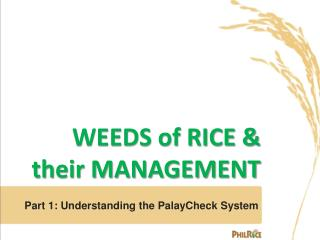 WEEDS of RICE &  their MANAGEMENT