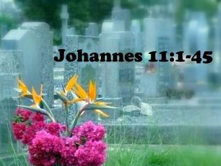 Johannes 11:1-45
