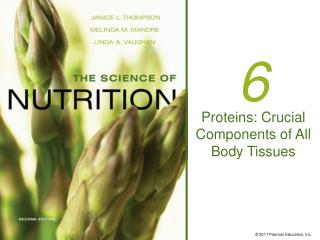 Proteins: Crucial Components of All Body Tissues