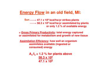 Energy Flow  in an old field, MI: