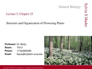 Lecture 5: Chapter 25