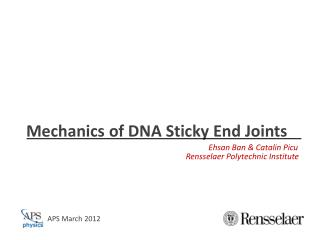 Mechanics of DNA Sticky End Joints