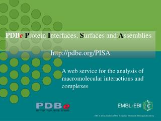 A web service for the analysis of macromolecular interactions and complexes