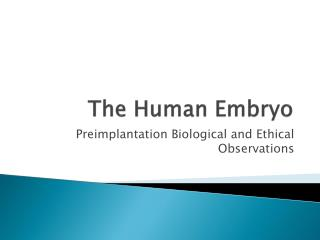 The Human Embryo