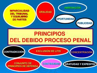 PRINCIPIOS  DEL DEBIDO PROCESO PENAL