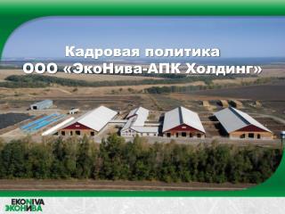 Кадровая политика  ООО « ЭкоНива -АПК Холдинг»