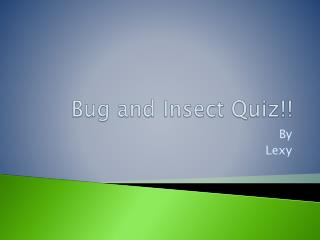 Bug and Insect Quiz!!