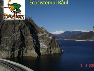 Ecosistemul Râul