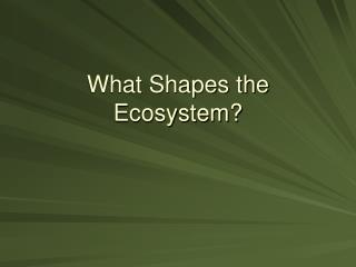 What Shapes the Ecosystem?