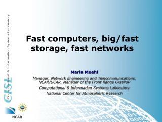 Fast computers, big/fast storage, fast networks