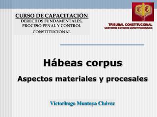 TRIBUNAL CONSTITUCIONAL CENTRO DE ESTUDIOS CONSTITUCIONALES
