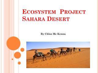 Ecosystem   Project Sahara Desert