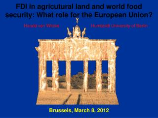 FDI in agricutural land and world food security: What role for the European Union?