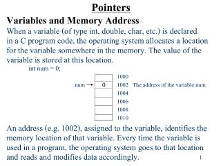 Pointers Variables and Memory Address