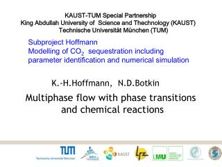 Subproject Hoffmann  Modelling  of CO 2    sequestration including