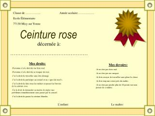 Ceinture rose