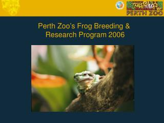 Perth Zoo's Frog Breeding &   Research Program 2006