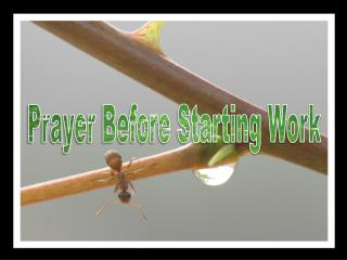 Prayer Before Starting Work