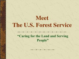 Meet  The U.S. Forest Service