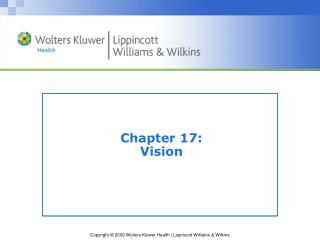 Chapter 17:   Vision