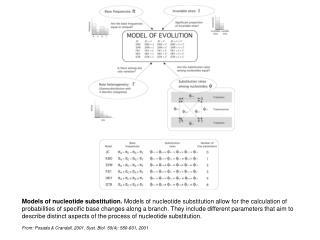 From: Posada & Crandall, 2001. Syst. Biol. 50(4): 580-601, 2001