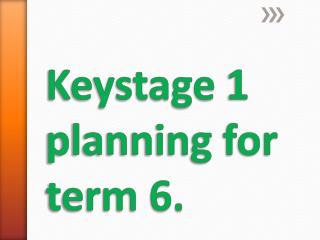 Keystage  1 planning for term 6.