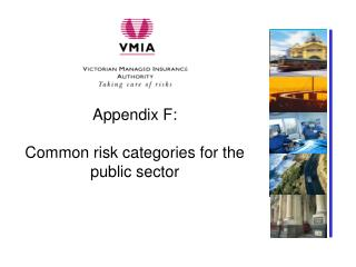 Appendix F: Common risk categories for the public sector