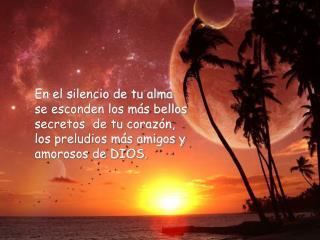 La soledad no es silencio, el silencio no es soledad.