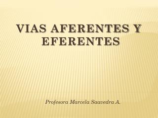 VIAS AFERENTES Y  EFERENTES