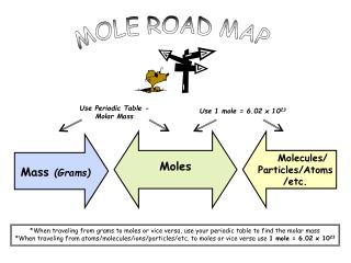 MOLE ROAD MAP