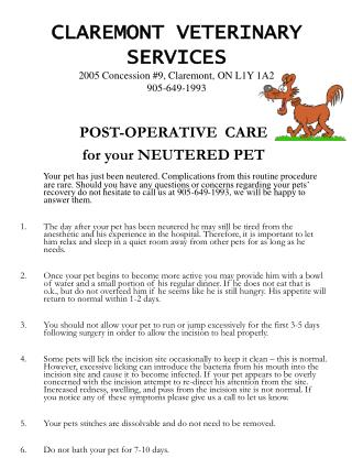CLAREMONT VETERINARY SERVICES 2005 Concession #9, Claremont, ON L1Y 1A2 905-649-1993
