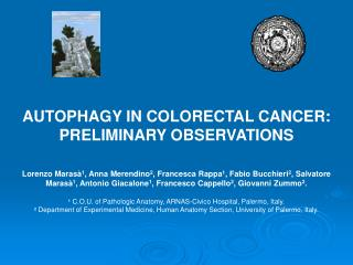 AUTOPHAGY IN COLORECTAL CANCER: PRELIMINARY OBSERVATIONS