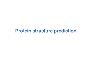 Structure Comparison Algorithms