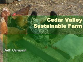 Cedar Valley Sustainable Farm