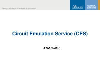Circuit Emulation Service (CES)