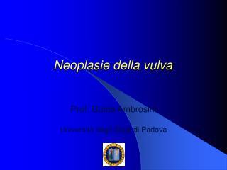 Neoplasie della vulva