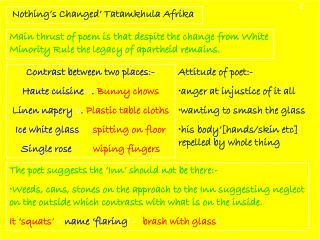 ' Nothing's Changed' Tatamkhula Afrika