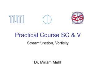 Practical Course SC & V