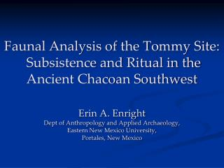 Faunal Analysis of the Tommy Site:   Subsistence and Ritual in the Ancient Chacoan Southwest