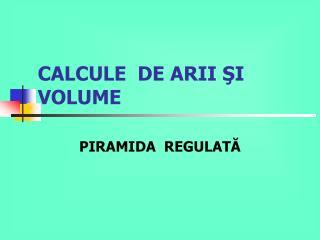 CALCULE  DE ARII  ŞI VOLUME