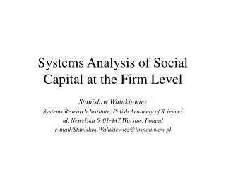 Systems Analysis of Social Capital at the Firm Level